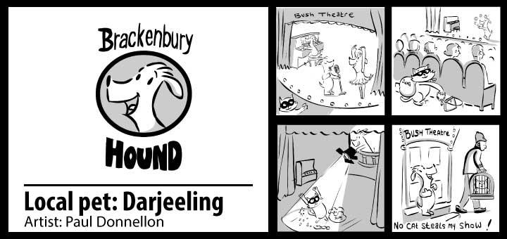 brackenbury-hound-darjeeling